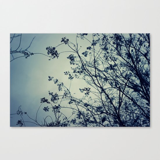 The Chill Factor Canvas Print