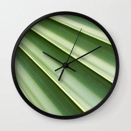 Texture leaf of Livistona palm trees Wall Clock