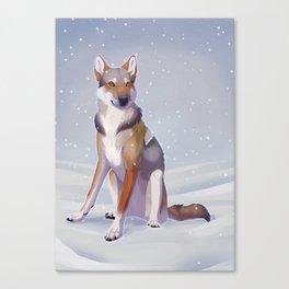 Snow Dog Canvas Print