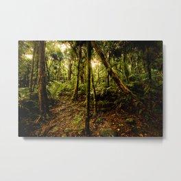 Between the trees Metal Print
