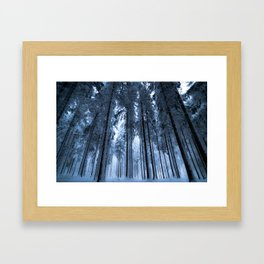 Snowy Winter Trees - Forest Nature Photography Framed Art Print