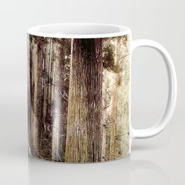 Stone Steps - Japan Nikko Coffee Mug