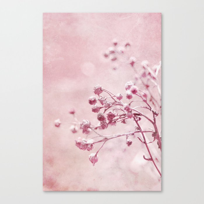 pink floral Canvas Print