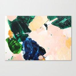 Palette No. Thirty Canvas Print