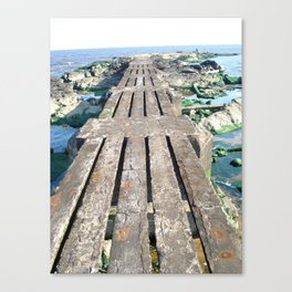 A Walk Into the Sea Canvas Print