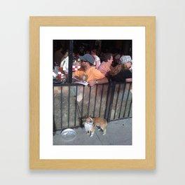 Feed Time Framed Art Print