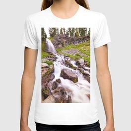 Plaikni Falls T-shirt