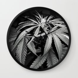The discovered beauty Wall Clock