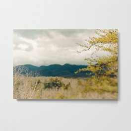 Early Spring in the Mountains Metal Print