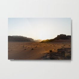 Living Sands Metal Print