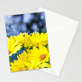 Close-up of beautiful yellow Osteospermum flower blossoms in spring Stationery Cards