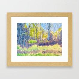 Swananowhere Framed Art Print
