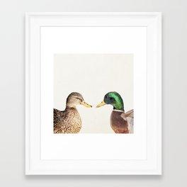 Two Ducks Framed Art Print