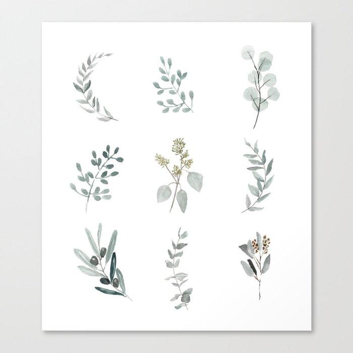 Botanical elements Canvas Print