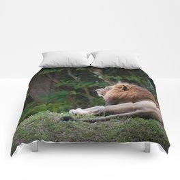 Aslan - Lion Dreaming of Heaven Comforters