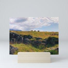 Iceland Sheep II Mini Art Print