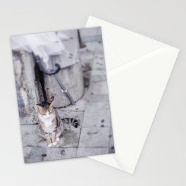 Okinawa cat Stationery Cards