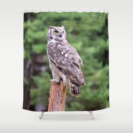 Great Horned Owl on a Post Shower Curtain