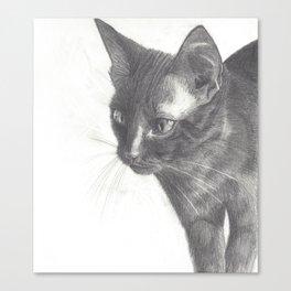 Minxie the Cat Canvas Print