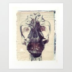 X Ray Terrestrial No. 1 Art Print