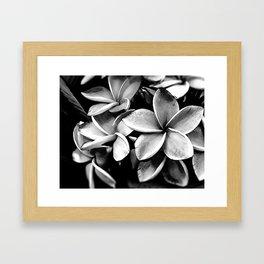 Tropicals B&W Framed Art Print