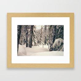 Winter Woods 2 Framed Art Print