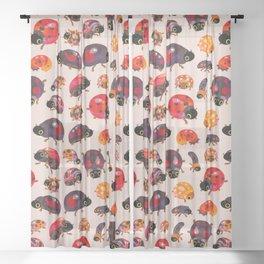 Lady beetles Sheer Curtain
