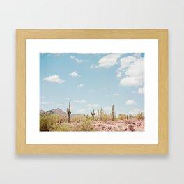 Saguaros in the Desert Framed Art Print
