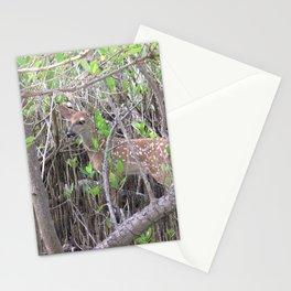Watercolor Deer, Eastern Whitetail 19, St John, USVI Stationery Cards