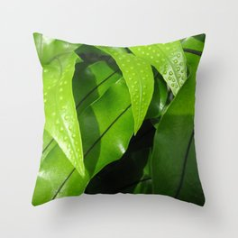 From the Conservatory #42 Throw Pillow