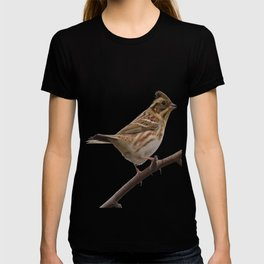Rustic Bunting Bird Vector Isolated T-shirt