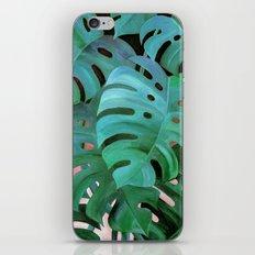 Monstera Love iPhone & iPod Skin