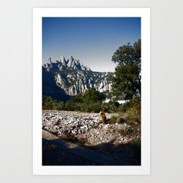 A cat enjoying the view - Montserrat, Spain Art Print