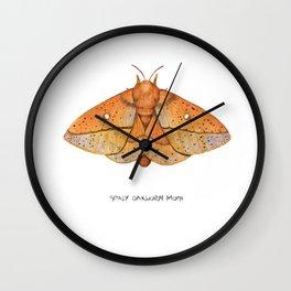 Spiny Oakworm Moth (Anisota stigma) Wall Clock
