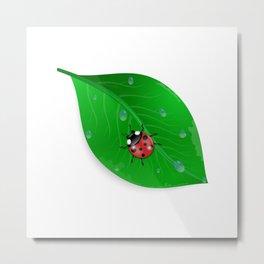 Green leaf and ladybird Metal Print