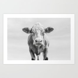 Animal Photography | Cow Portrait Minimalism | Farm animals | black and white Art Print