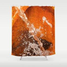 Ferrous water Shower Curtain