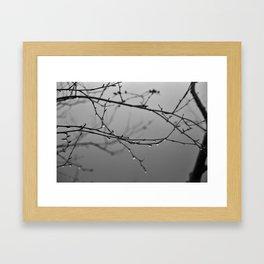 A Whisper No. 04 Framed Art Print