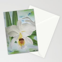 White orchid Cattleya Gaskelliana Stationery Cards
