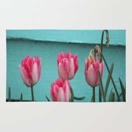 Tulips Against The Wall Rug