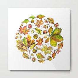 Autumn forest composition Metal Print