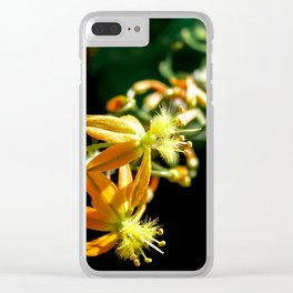 Bulbine flower Clear iPhone Case