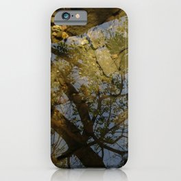 Late Summer Puddle iPhone Case