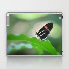Butterfly garden Laptop & iPad Skin