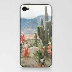 Decor iPhone & iPod Skin