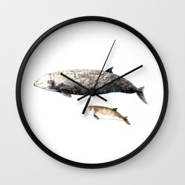 Cuvier´s beaked whale Wall Clock