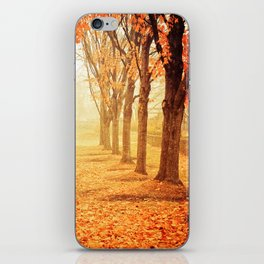 The Poetry of Autumn iPhone Skin