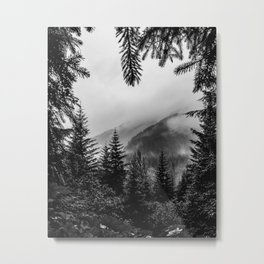Winter forest trees #10 - Black and white Metal Print