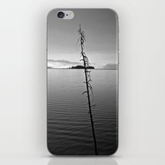Lonely Alone iPhone & iPod Skin