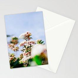 Flower Photography by Kumiko SHIMIZU Stationery Cards